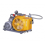 Bauer Poseidon PE100 Portable Single Phase Electric Air Compressor